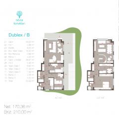 Dublex / B
